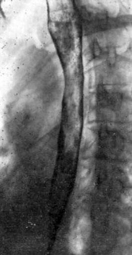 сайт диетолога марины щелоковой