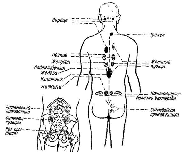 domashnyaya-erotika-v-uniforme