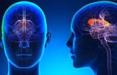Справка от психоневролога и нарколога
