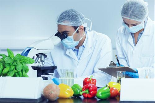 Здоровый взгляд на пищевую промышленность