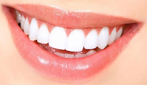 Вопросы протезирования при полном отсутствии зубов