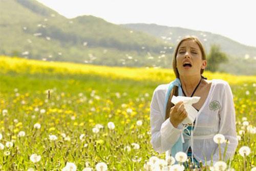 Аллергия на пыльцу (поллиноз): симптомы, лечение и профилактика