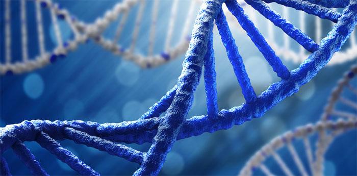 Генетические методы обследования