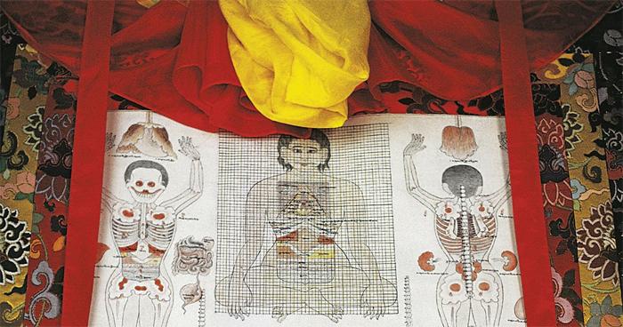 Каковы научные доказательства тибетской медицины?